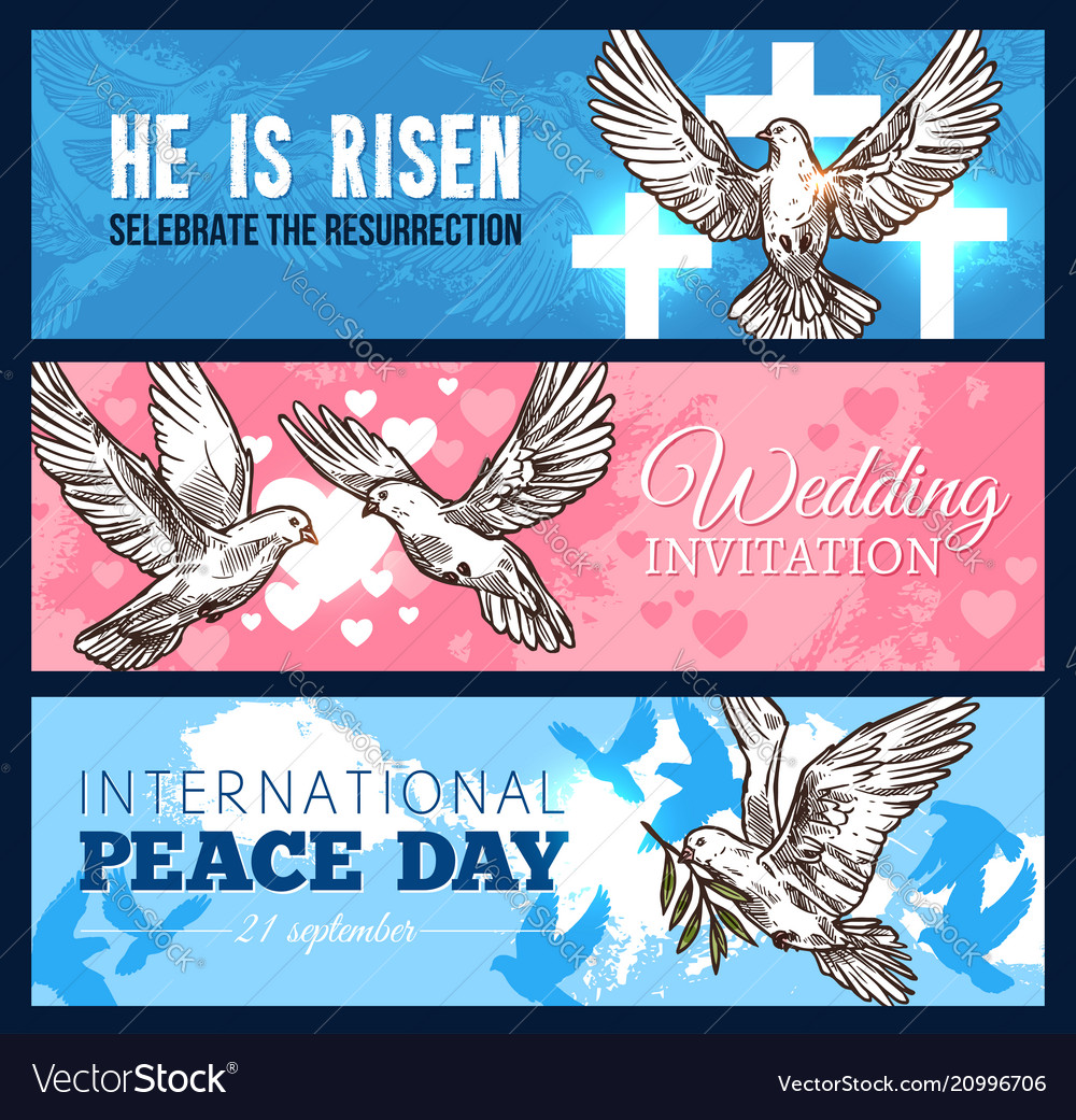 Dove bird banner for wedding and religion design