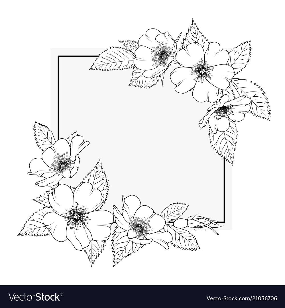 Floral Border Designs Black And White