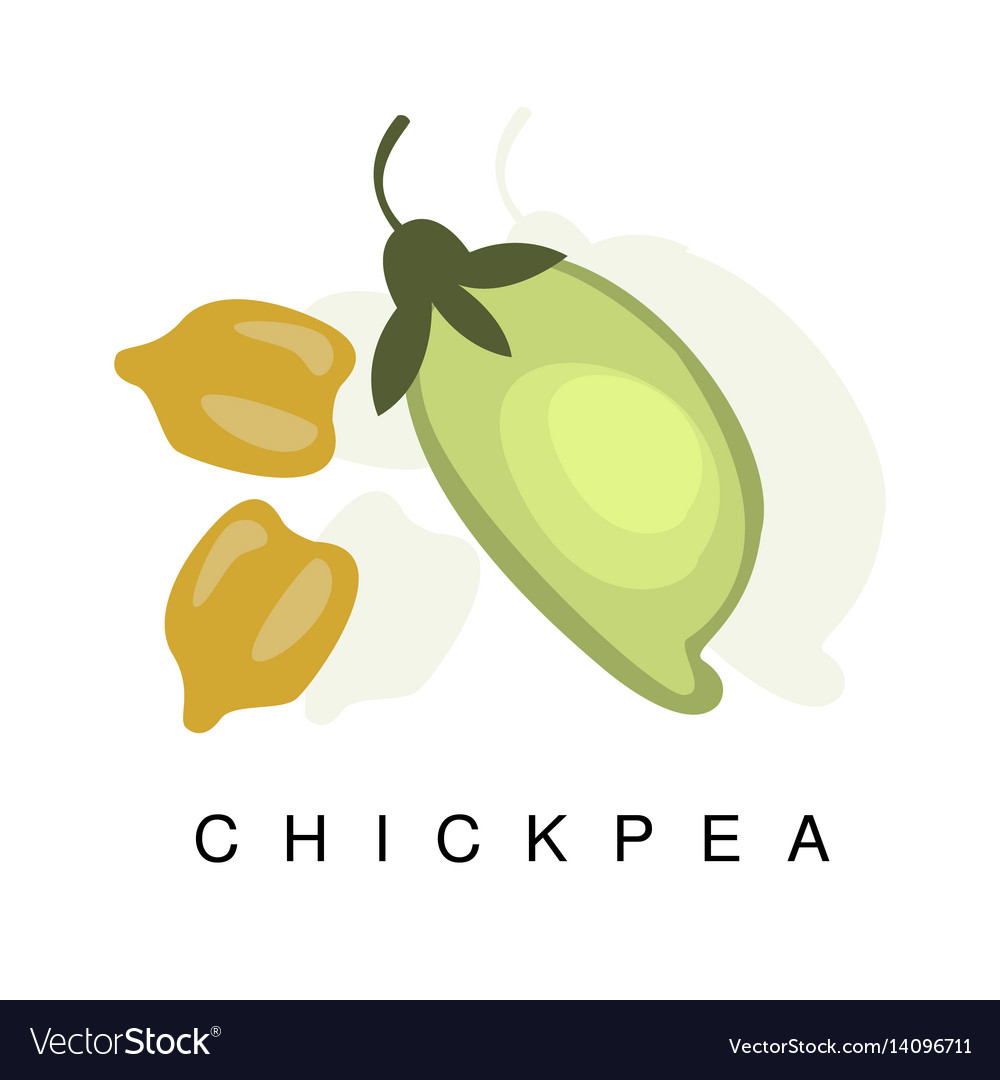 Chickpea pod infographic with