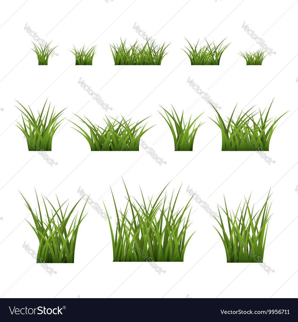 Green Grass Bushes Set Plant Royalty Free Vector Image
