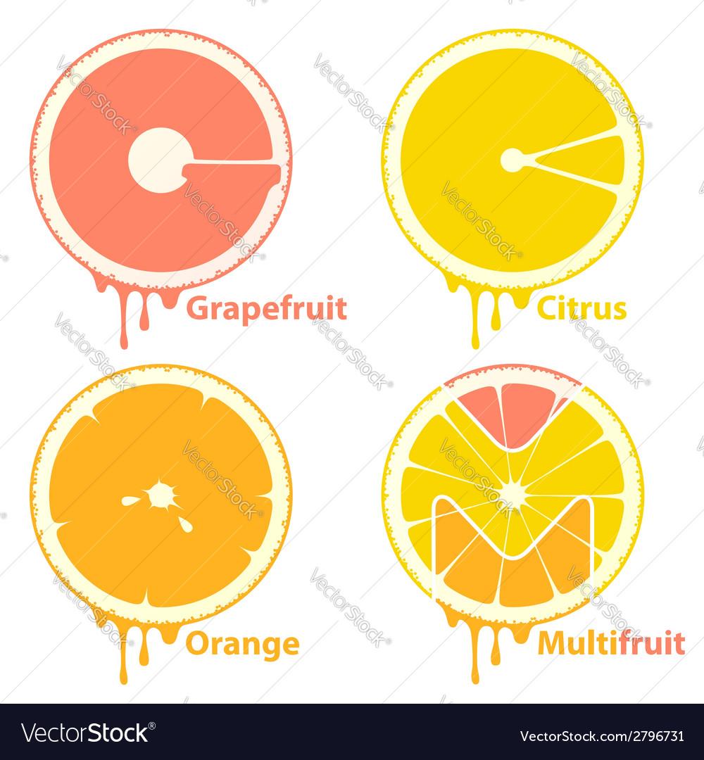 Citrus icons vector image
