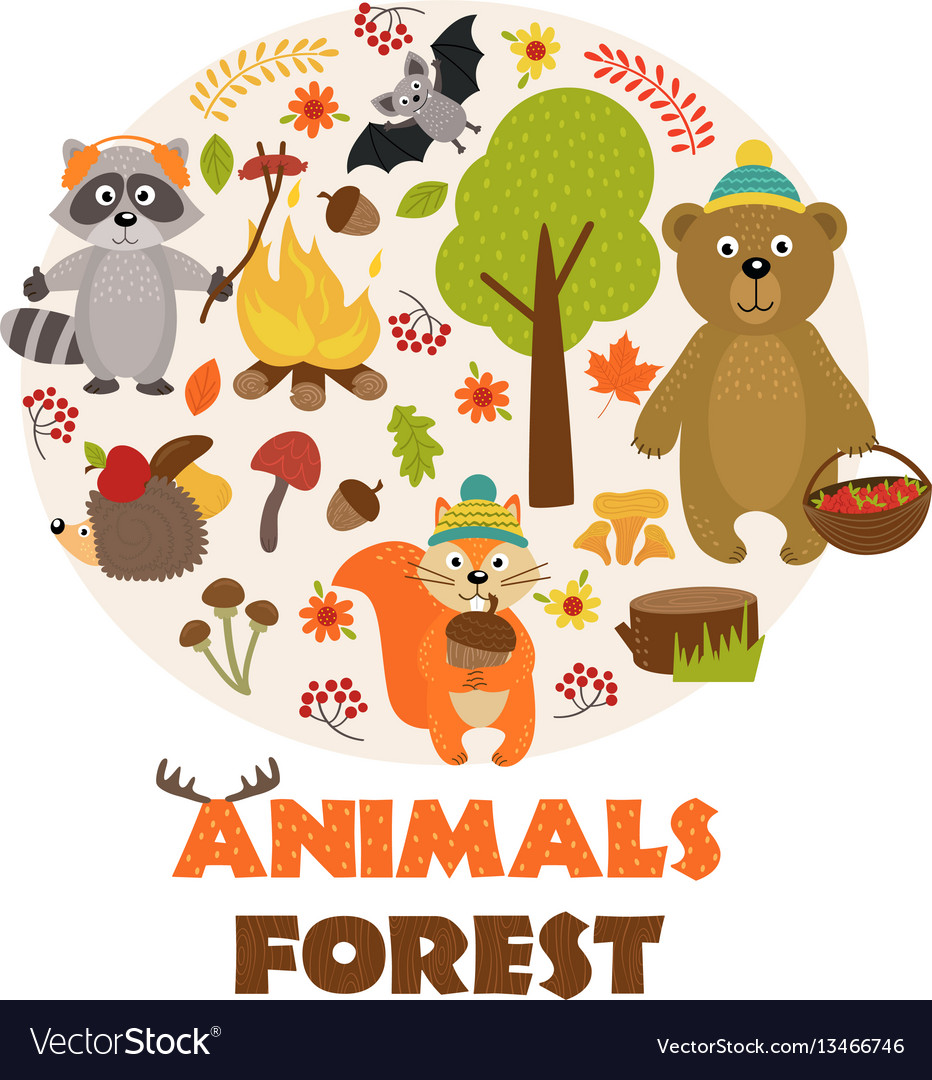 Animals of forest part 1