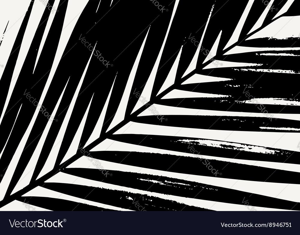 Palm Leaf Poster Design vector image