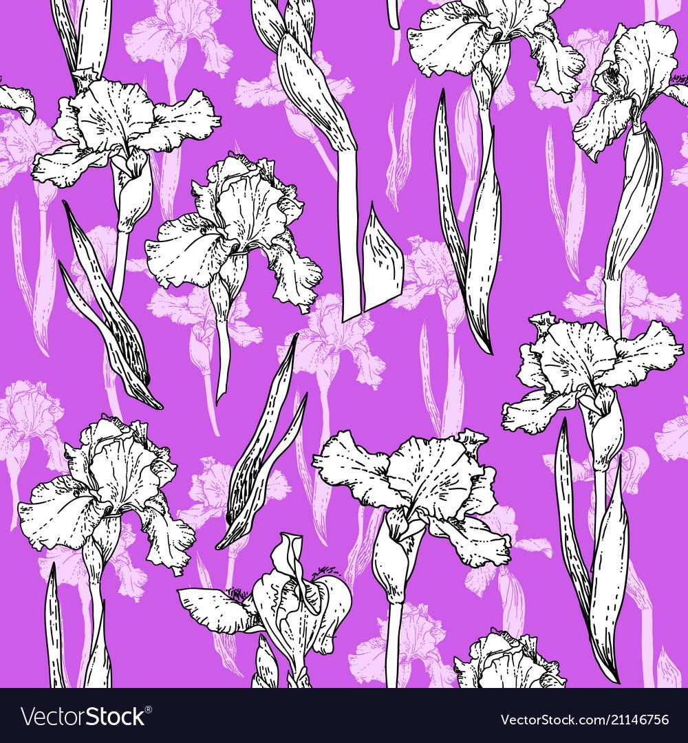 Trend violet flowers