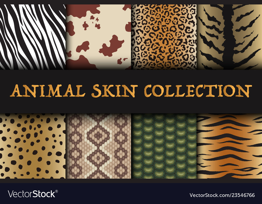 Seamless animal skin patterns set safari textile