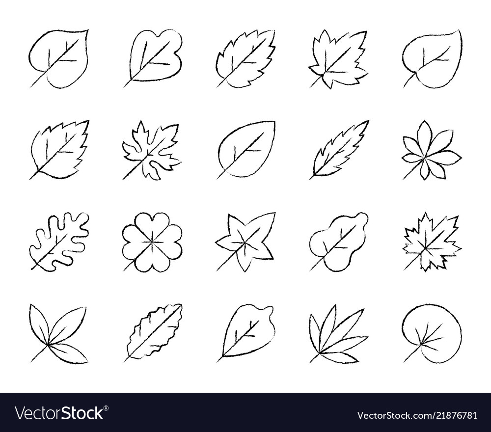 Organic leaf charcoal draw line icons set