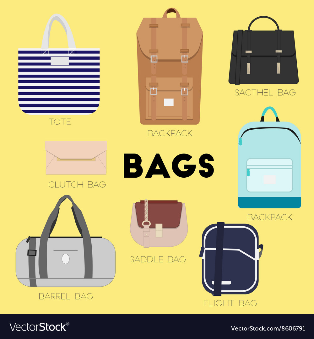 Diffe Kinds Of Bags And Purses Vector Image