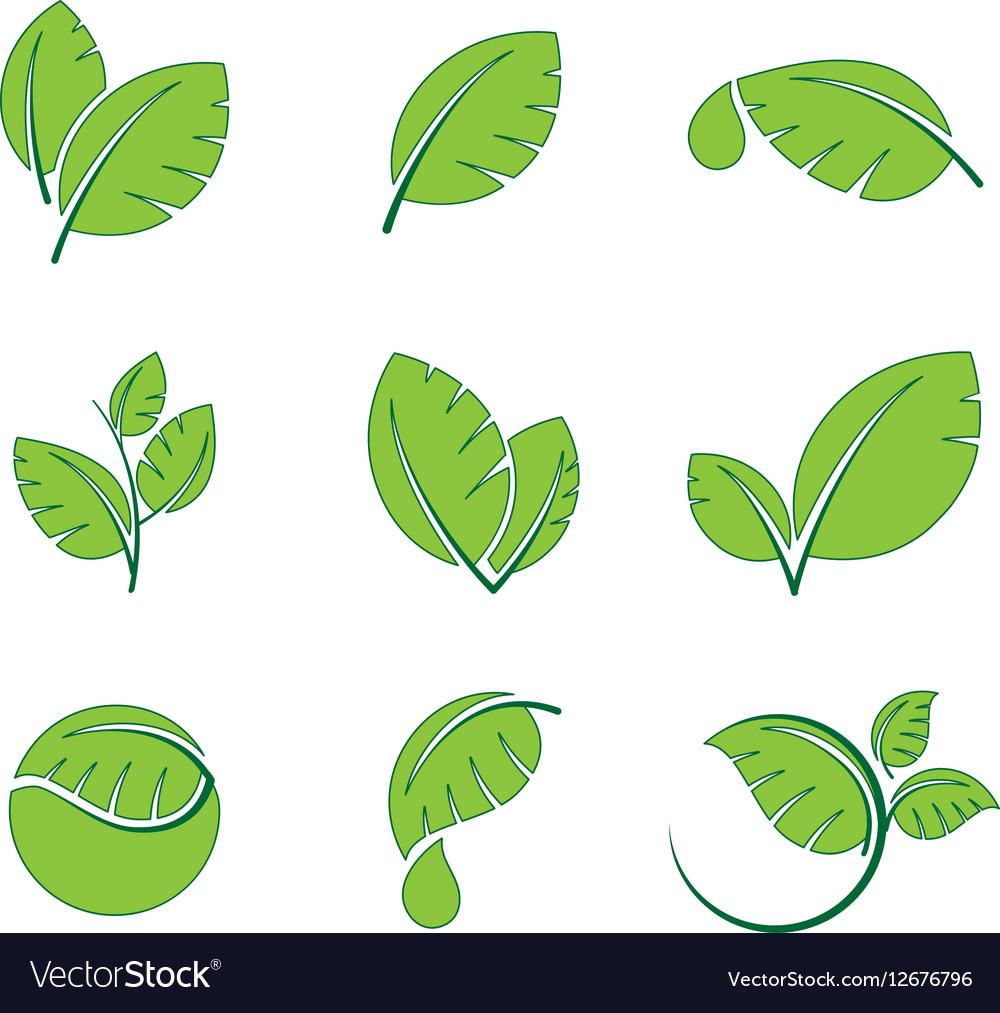 Green leaves leaf symbol icon set vector image