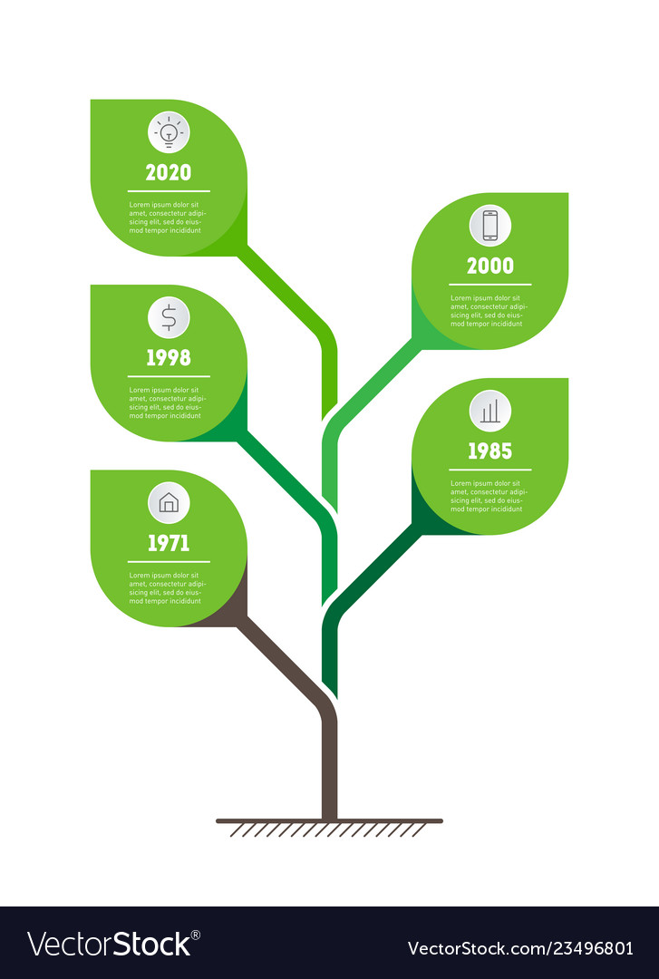 Tree of development and growth of the eco