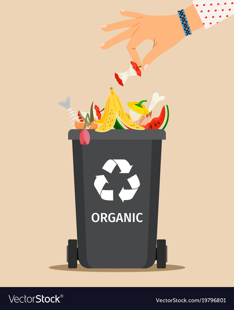 Woman hand throws organic garbage vector image