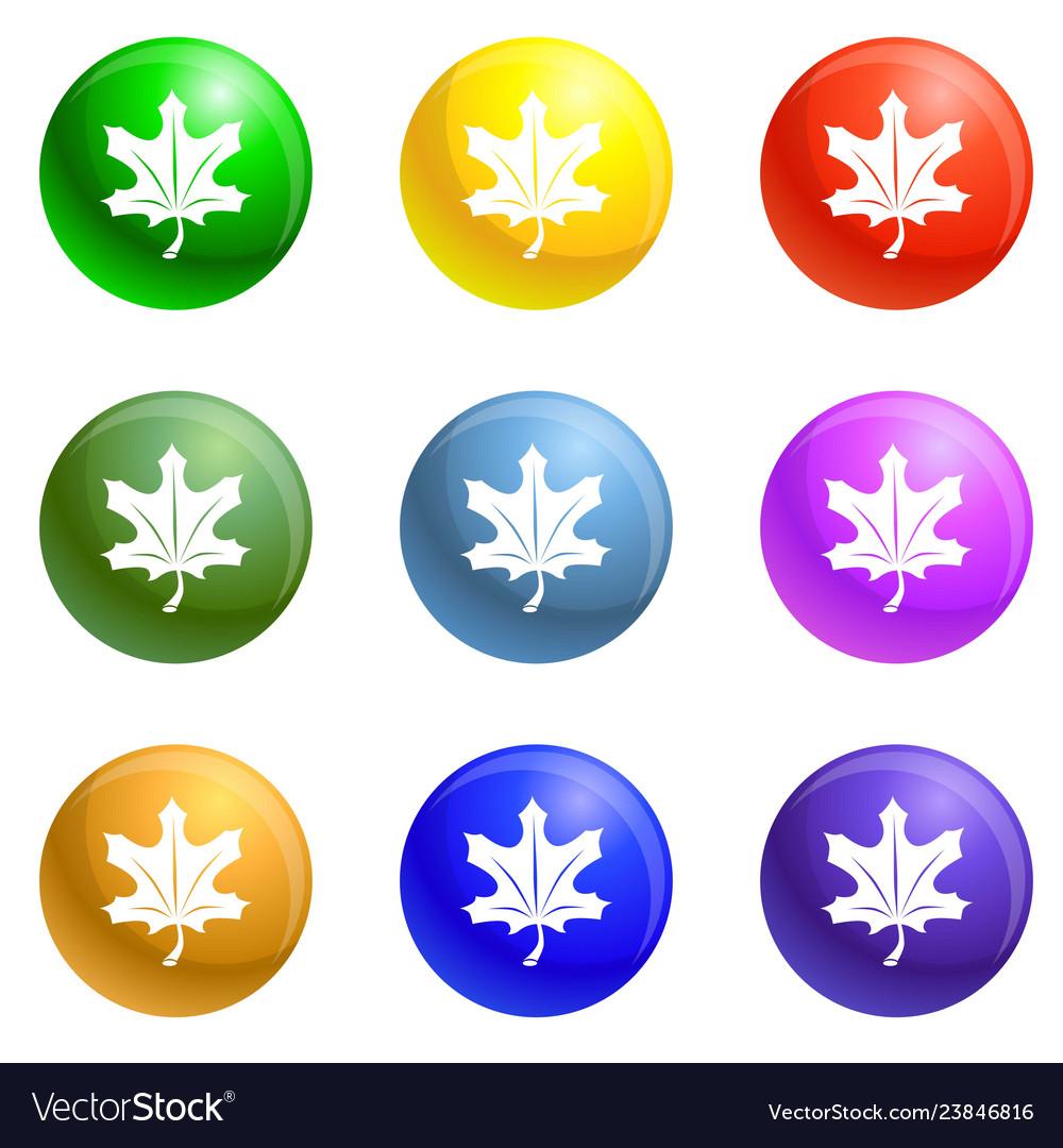 Autumn leaf icons set