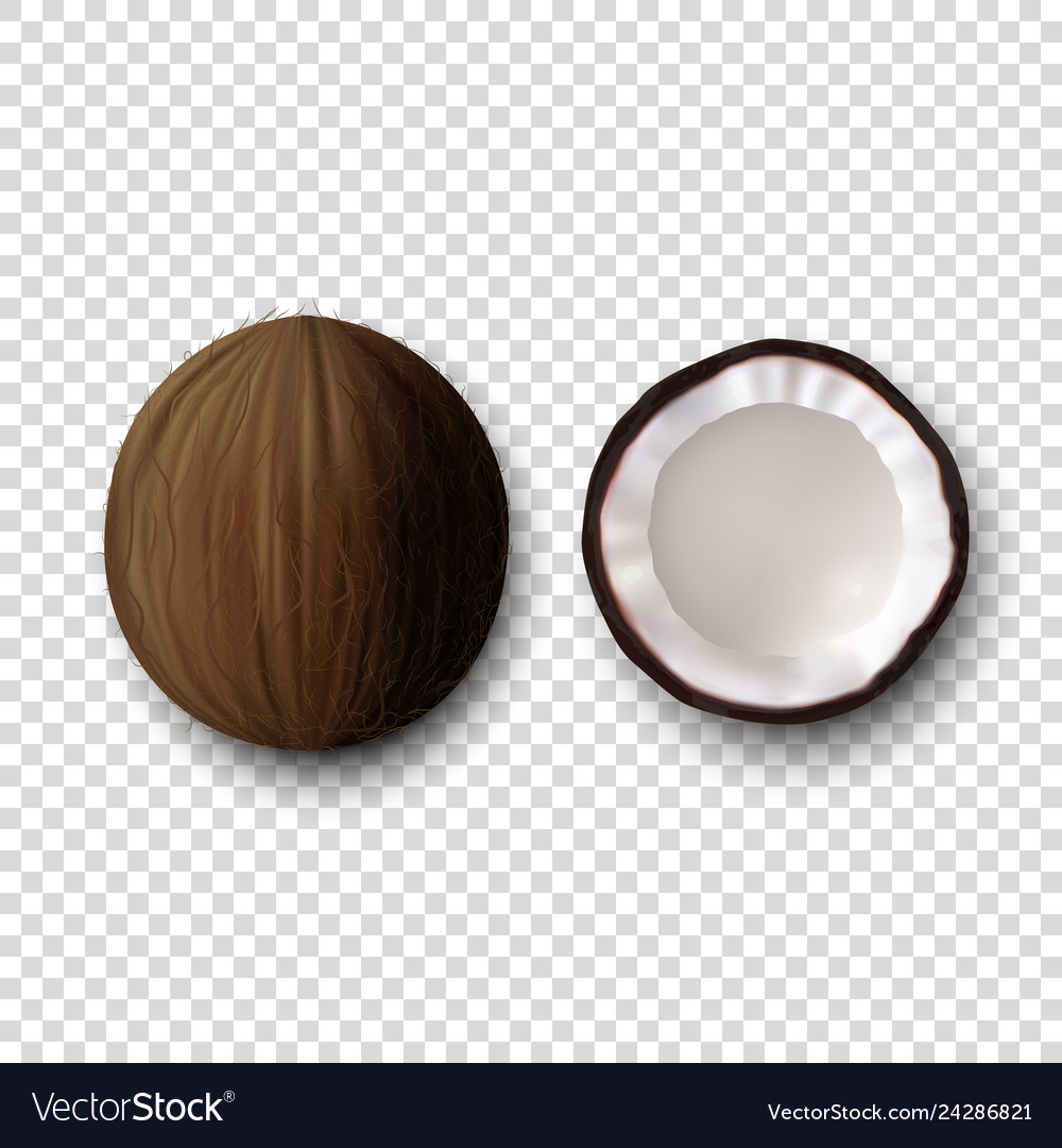 3d realistic whole and halves coconut icon