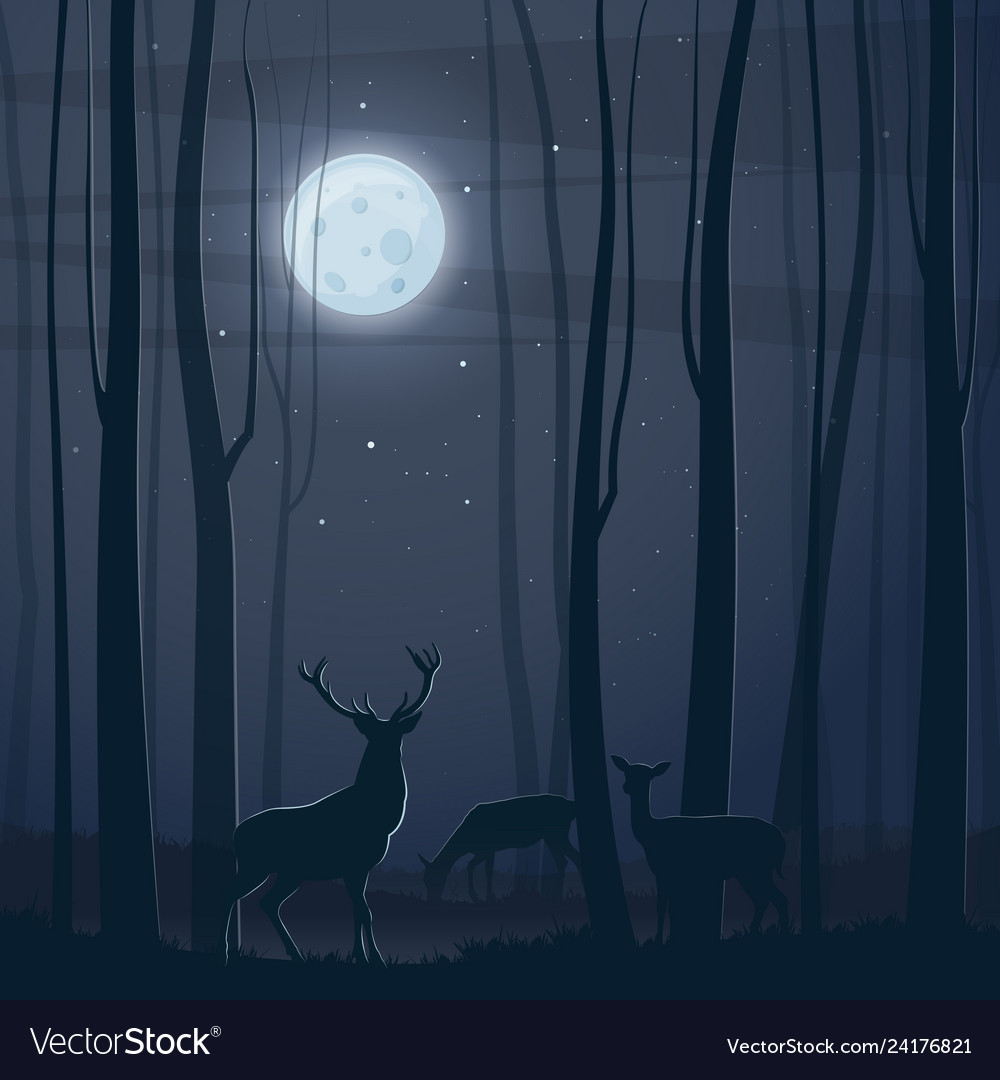 Night scene with a forest moon and deers