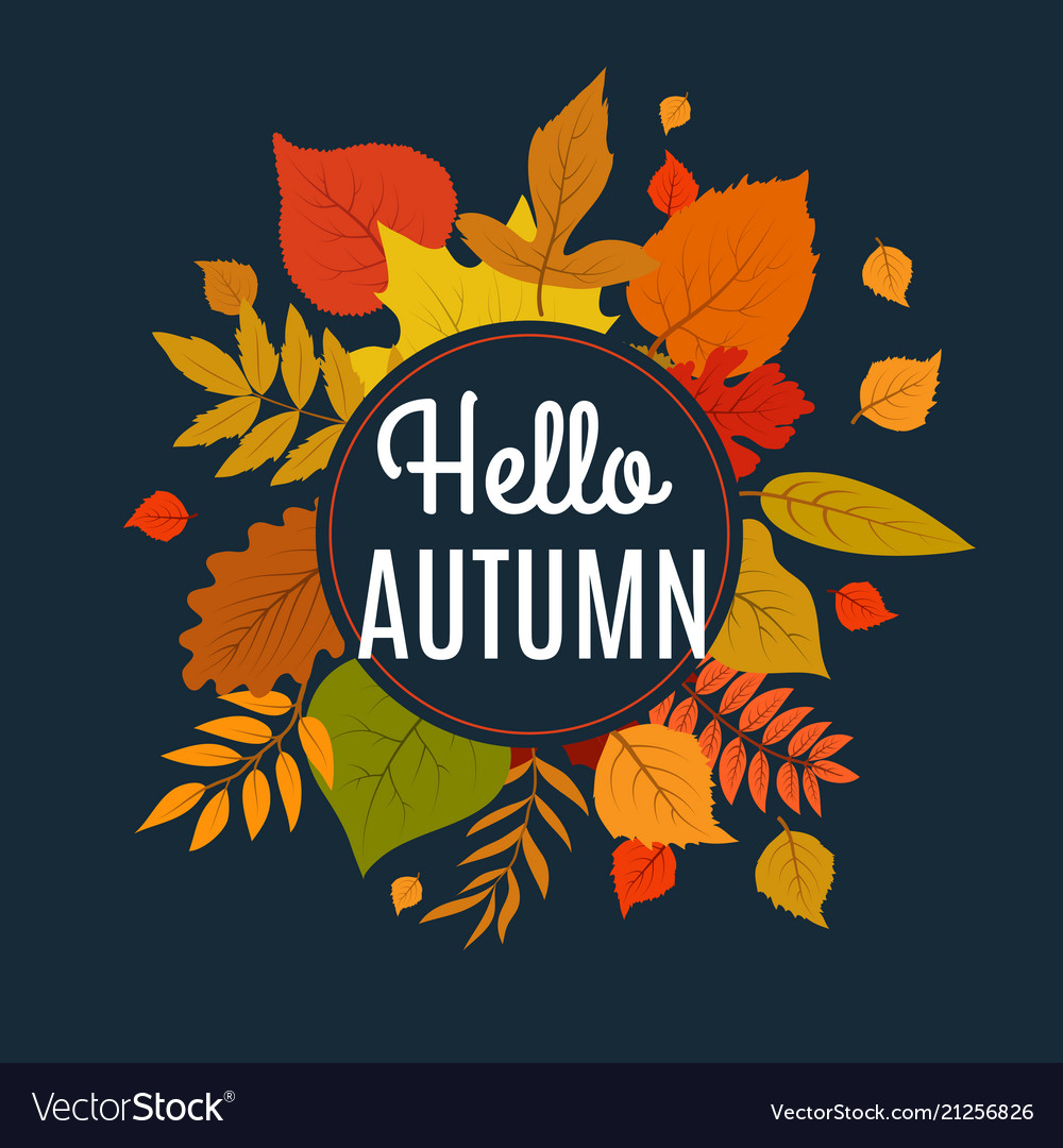 Hello autumn background with fall leaves nature