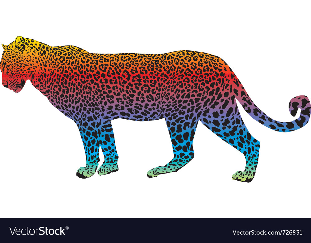 Leopard - abstract rainbow