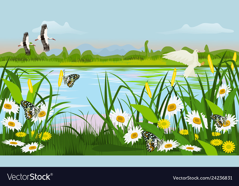 Location Of The Swamp With Grass Trees Flowers Vector Image