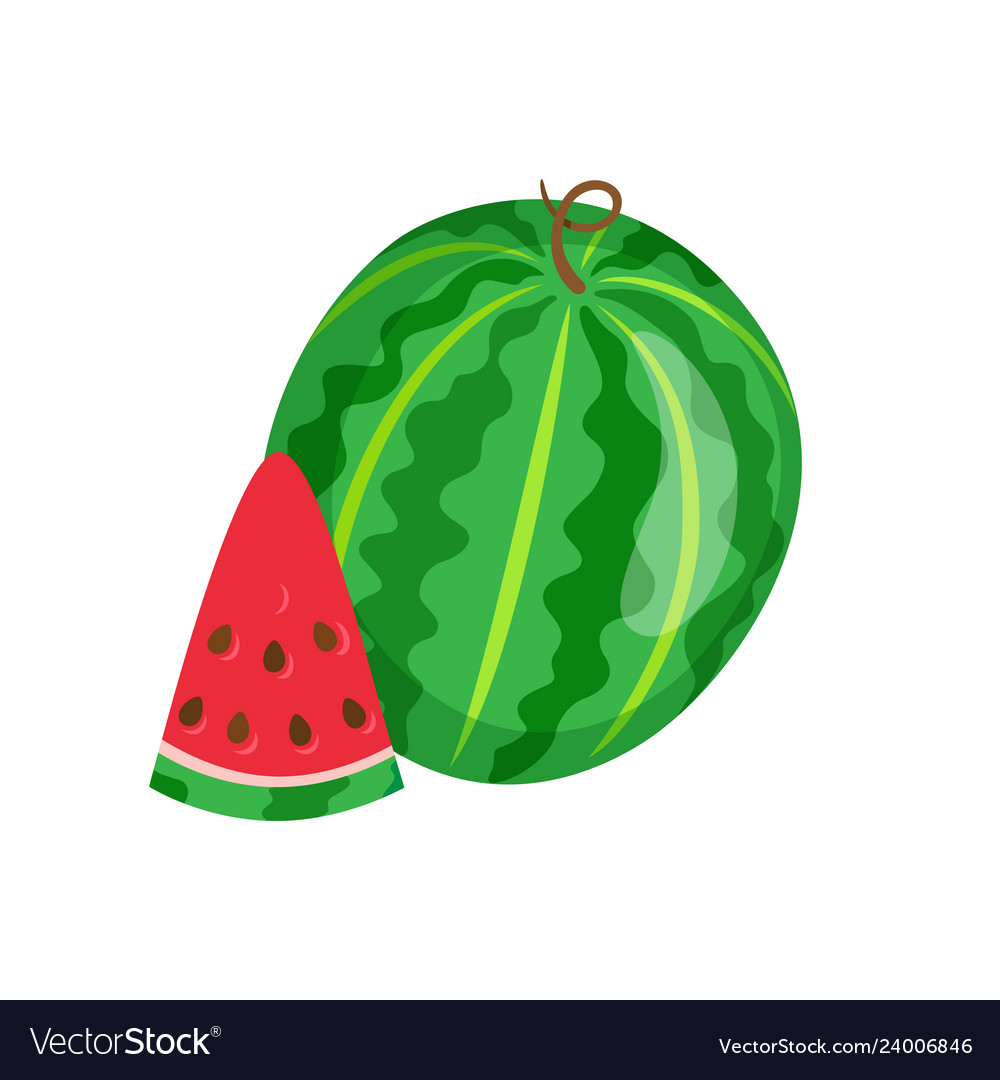 Watermelon sweet fruit sliced exotic berry icon