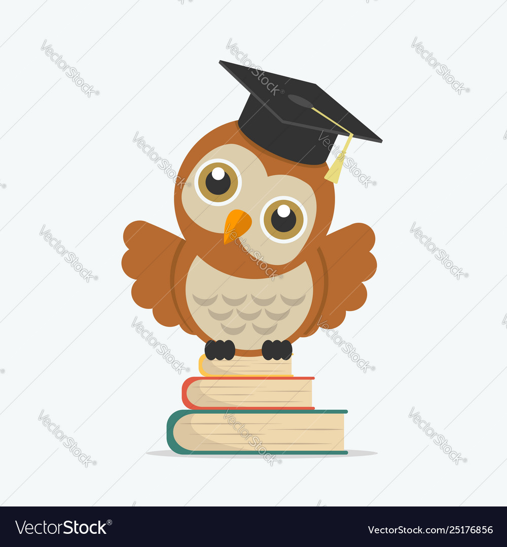 Cute owl with books and graduate cap