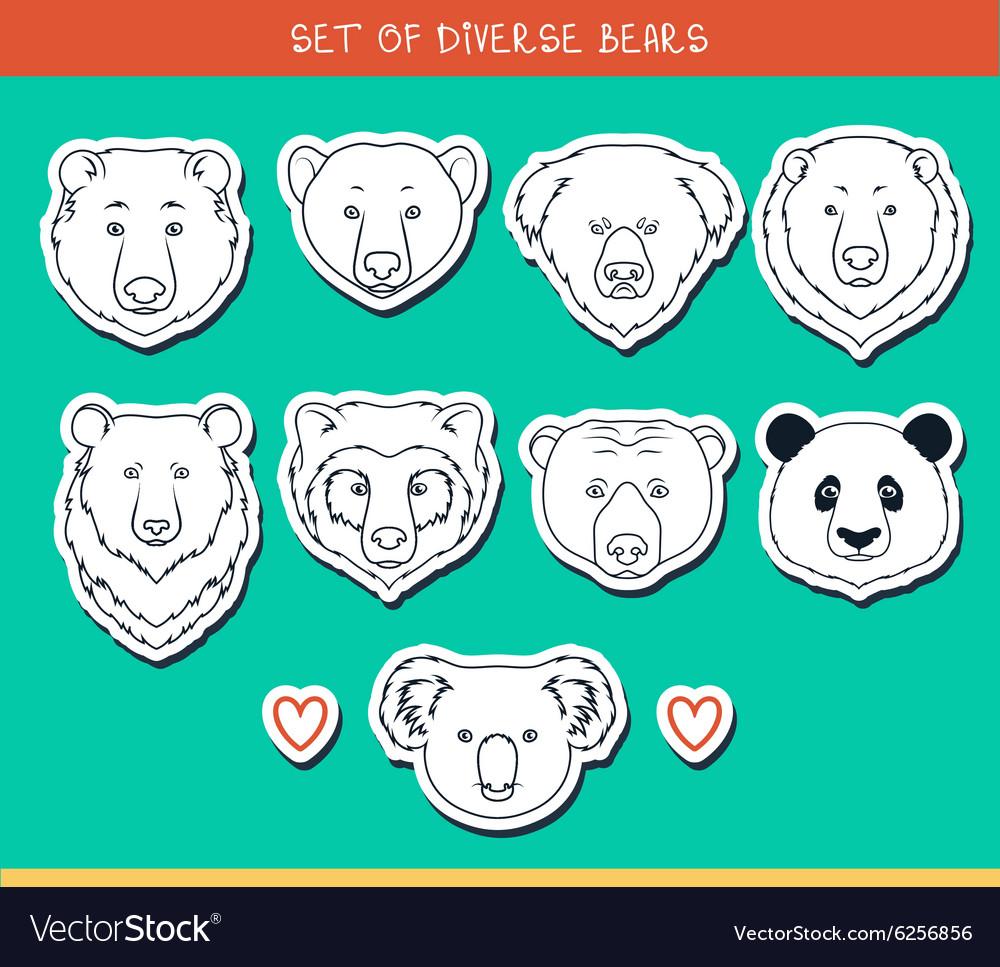 Set 9 muzzles stickers bears handmade linear style