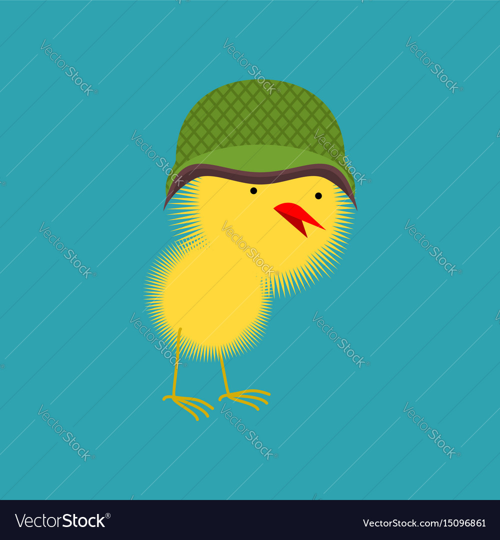 Chick in military helmet small chicken little vector image