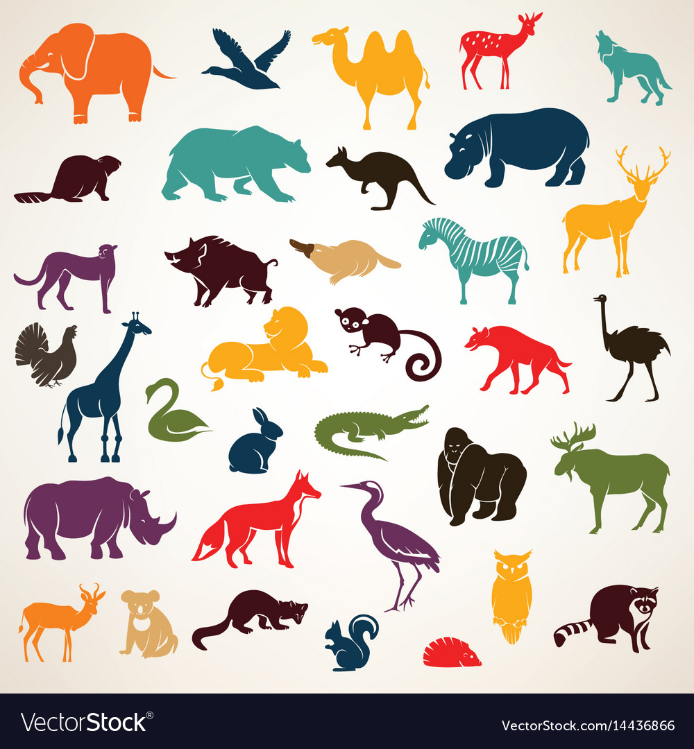 Big set of african and european animals