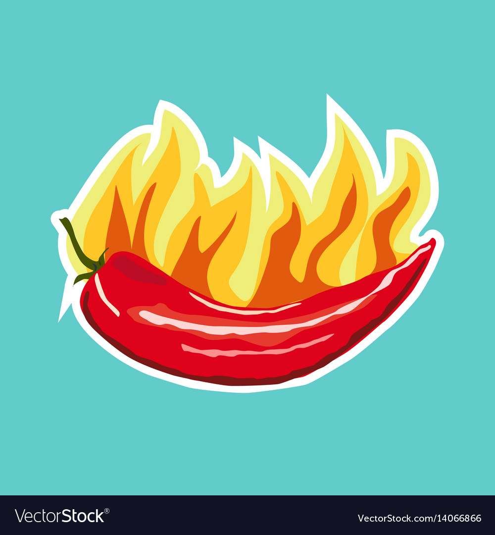 Chilli pepper icon sticker flat style