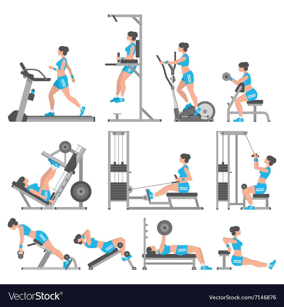 Чего Начать Новичку Тренажерном Зале Для Похудения. Программы тренировок для похудения в тренажерном зале