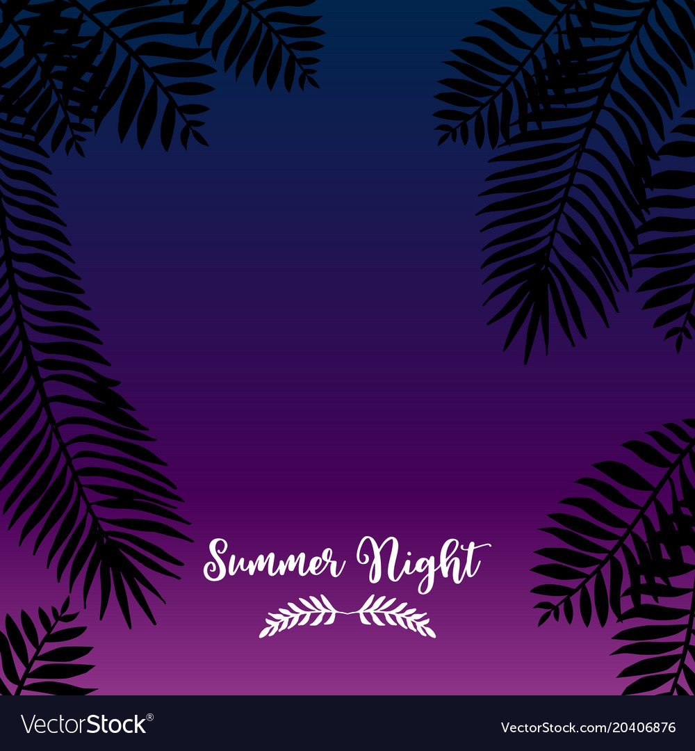 Summer night hand drawn tropic background vector image