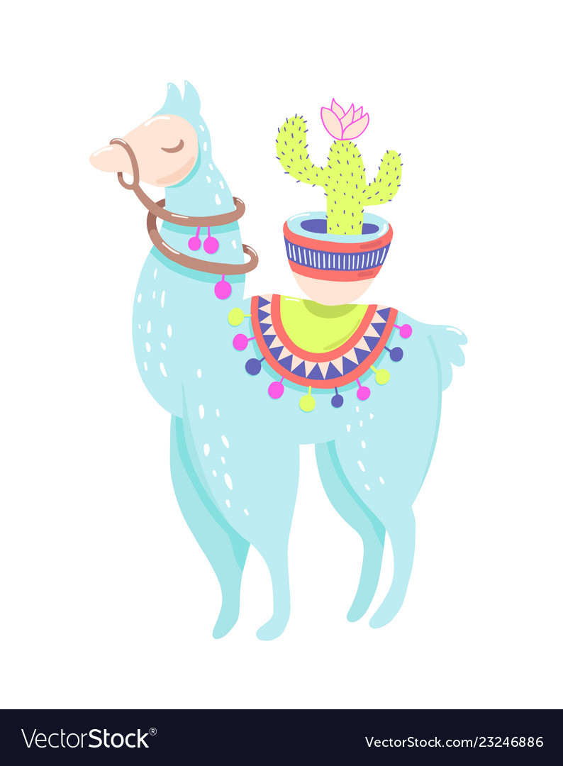 Funny Llama With Cactus Isolated On White Blue