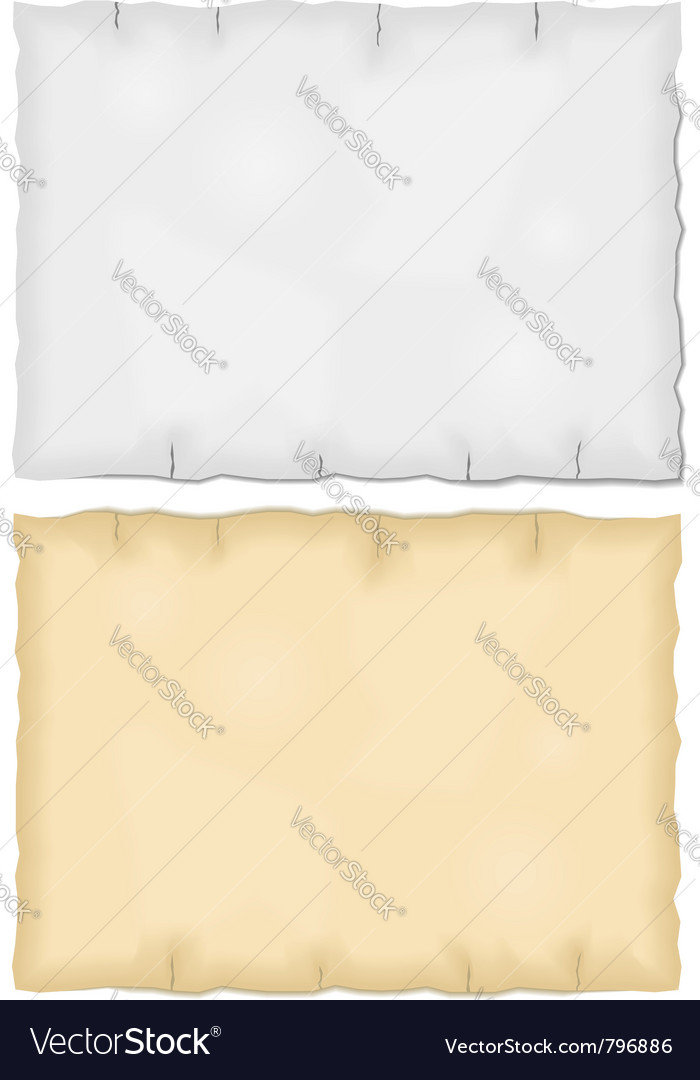 Olp paper vector image
