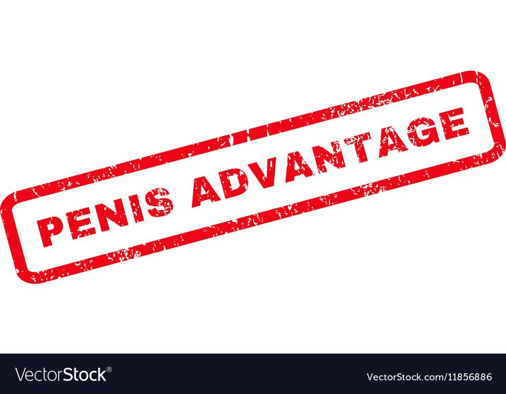 Penis Advantage Rubber Stamp vector image