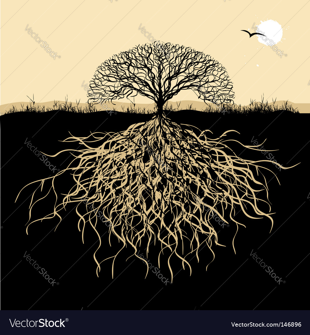 tree roots vector. Tree Silhouette With Roots