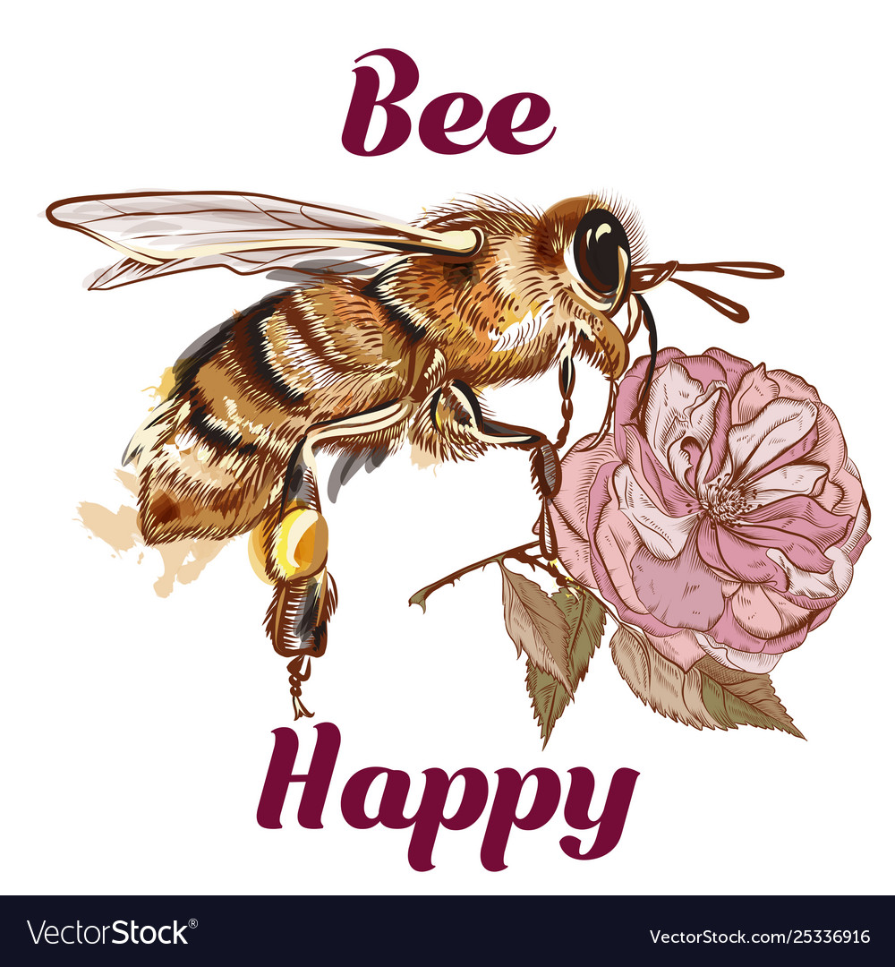 Fashion bee be happy concept