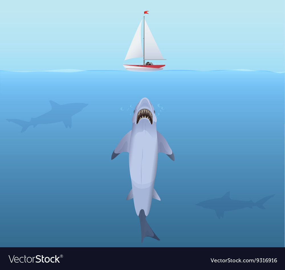Hungry Shark with big jaw Attack yacht sheep from