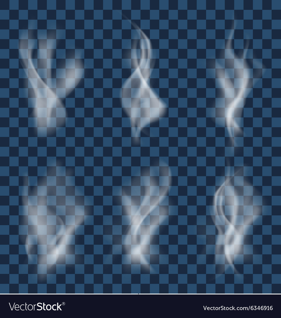 Set of white cigarette smoke waves on transparent vector image