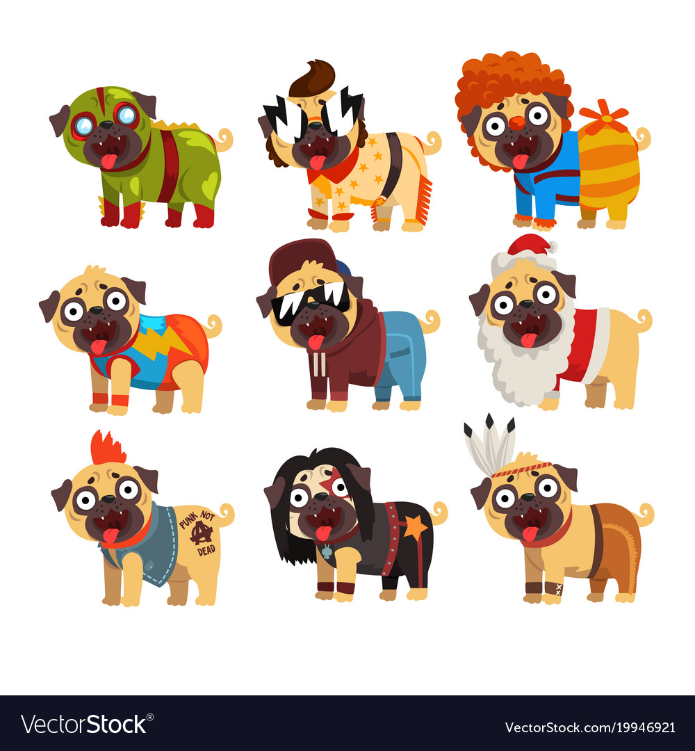 Funny pug dog character in colorful funny costumes