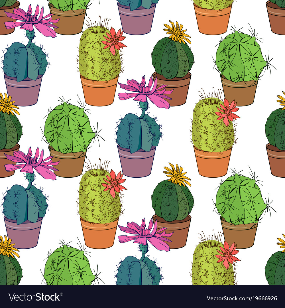 Seamless pattern with traditional homeplant cactus