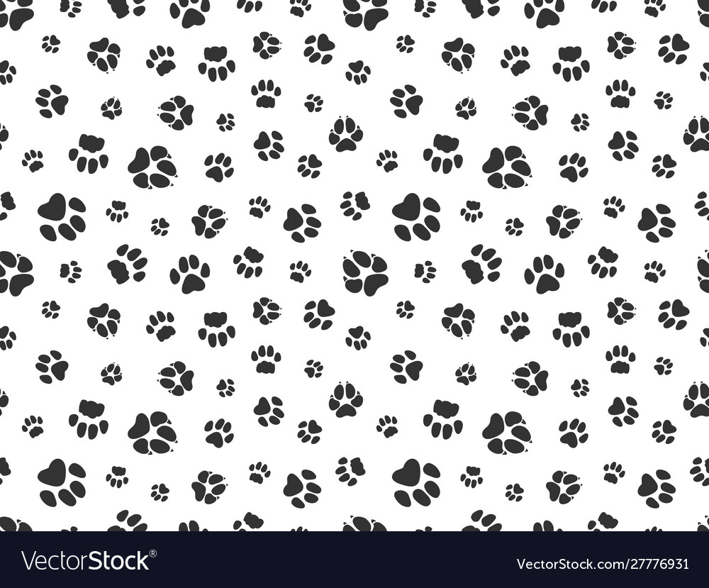 Pet paw pattern animal background with god cat