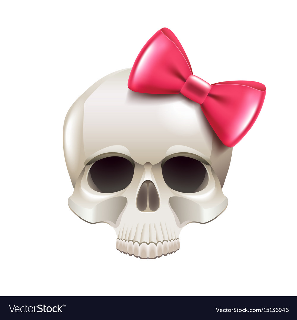 Girl skull with pink bow isolated on white