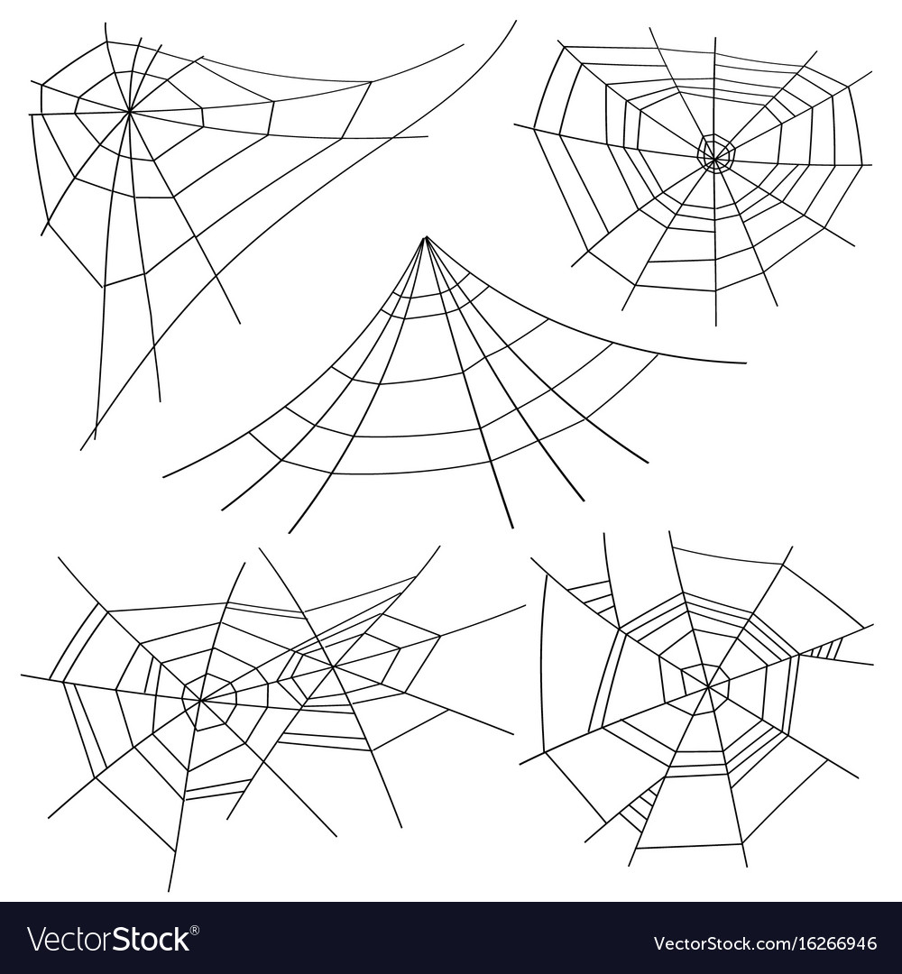 Halloween spider web set isolated for