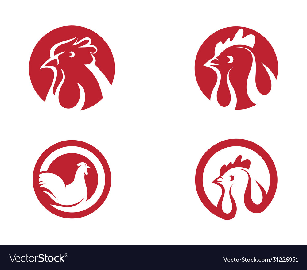 Chicken icon design vector