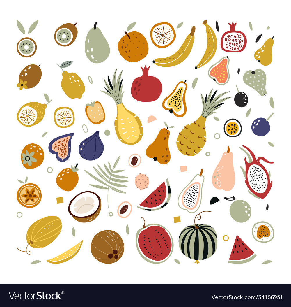 Hand drawn tropical and exotic fruits isolated on