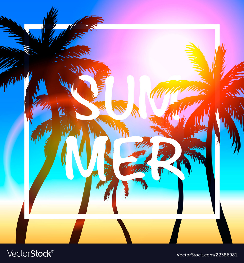Palms summer cover frame banner