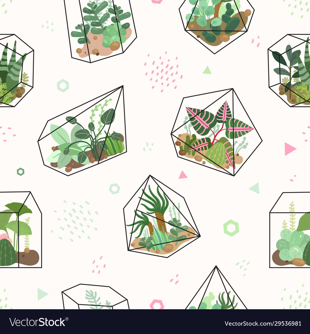 Succulents summer tropical flowers terrarium and