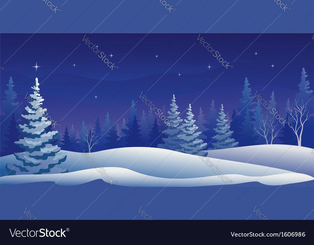 Winter night panoramic