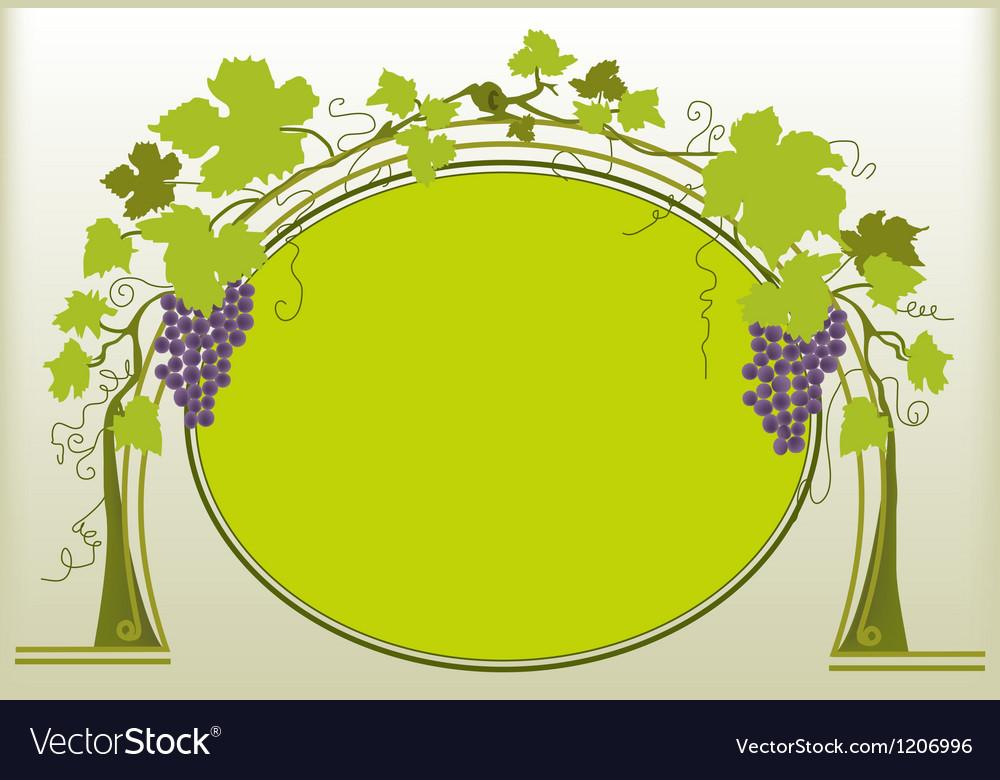 Grapes ornament vector image