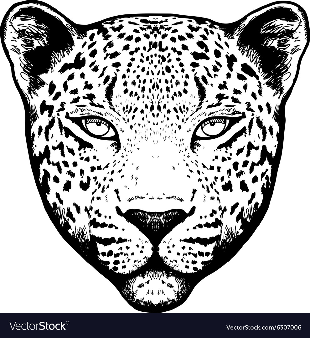 Graphical leopard head