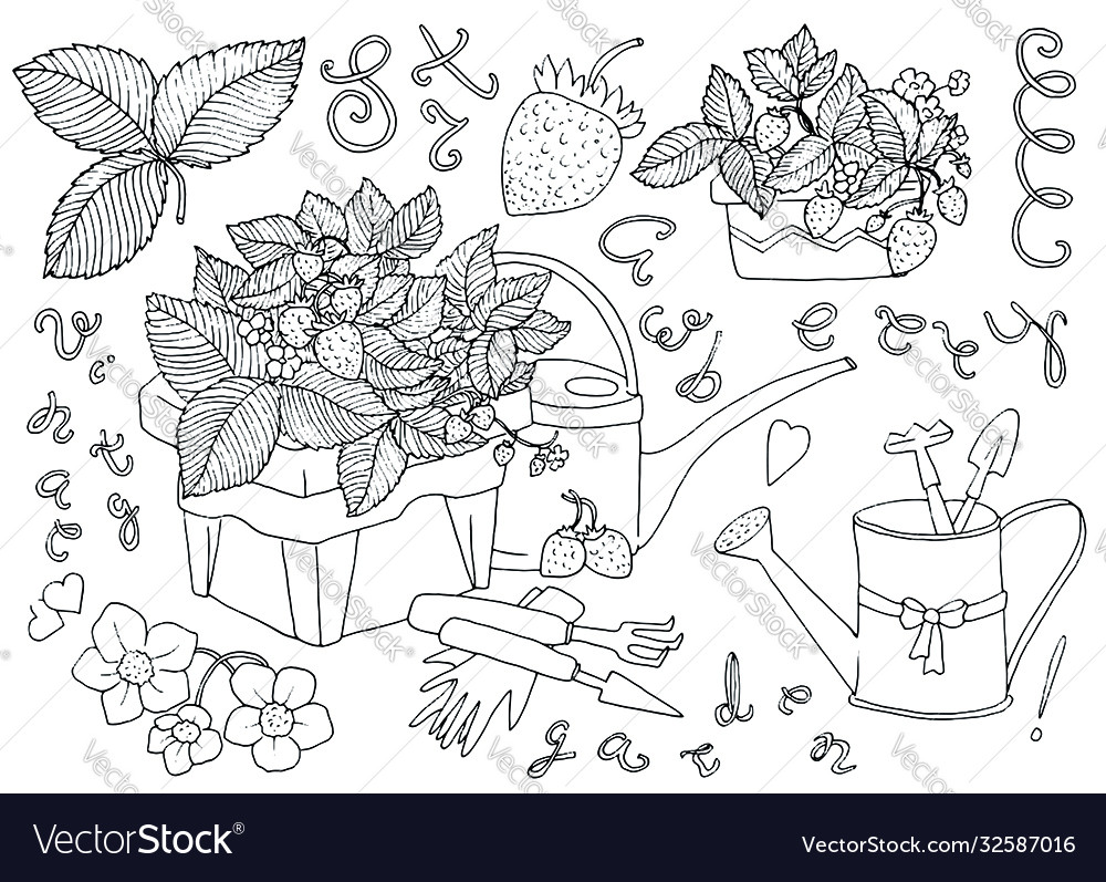 Adorable set with strawberry plants in pots