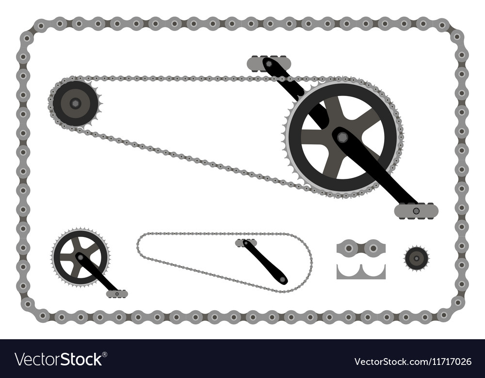 Bicycle chain part on white vector image