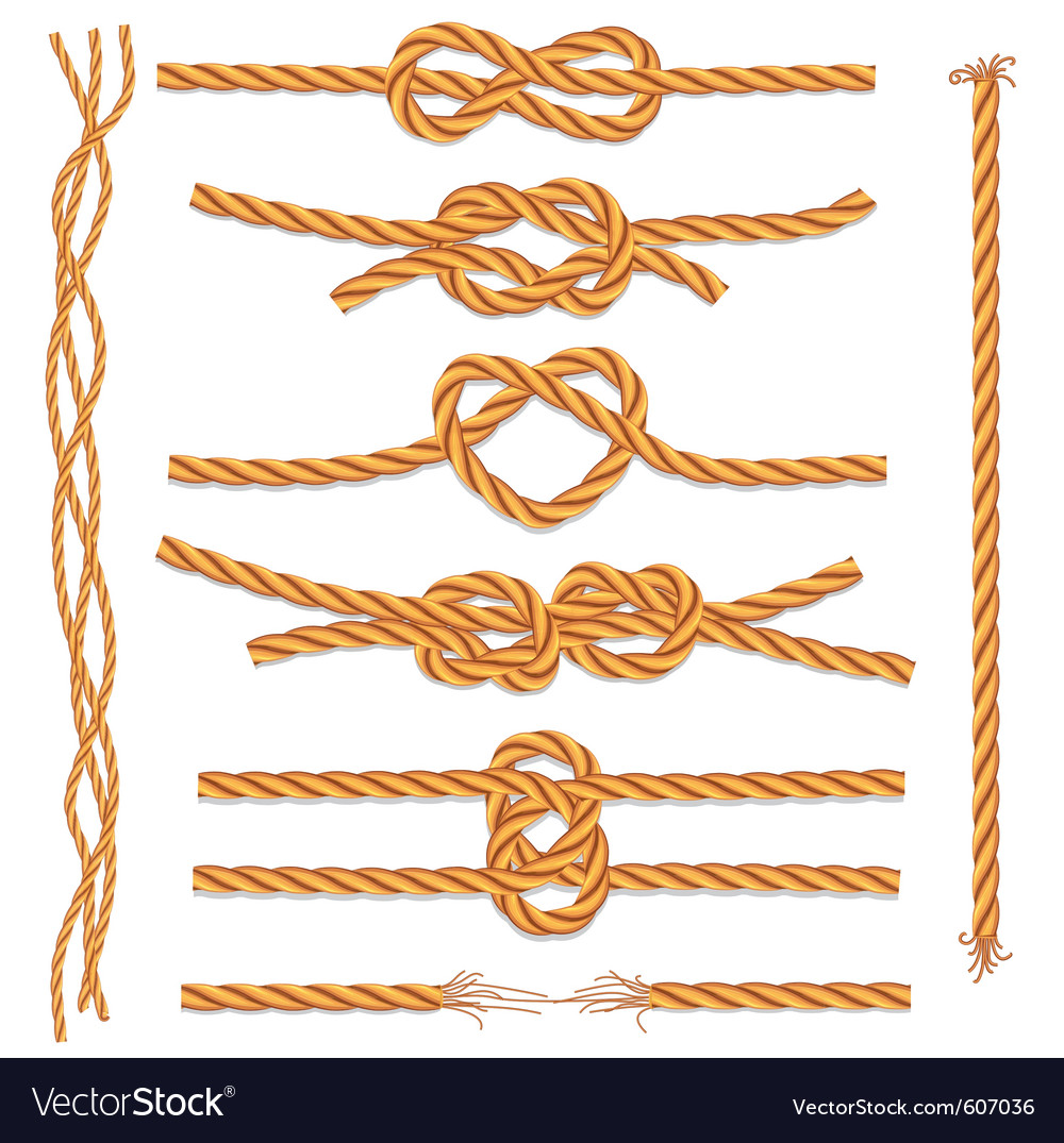 Set of ropes and knots vector image